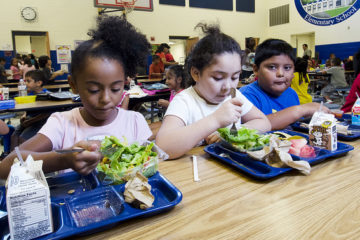 Free School Lunch